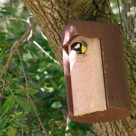 1B Caja nido para herrerillos y carboneros