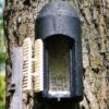 1FD-caja-nido-para-murcielagos