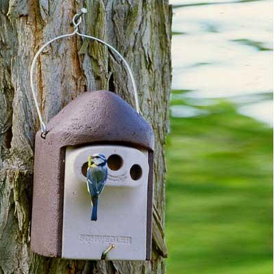 2GR Caja nido para páridos 3 entradas