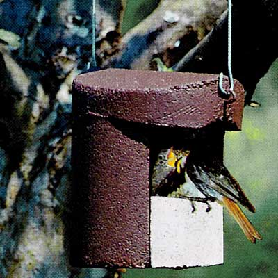 2H Caja nido para petirrojo y colirrojo