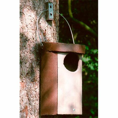 Nr. 5 Caja nido para cárabo